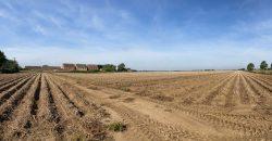 13.90 Ha (34.36 Ac) Land at High Road, Guyhirn, Wisbech, Cambridgeshire PE13 4ET