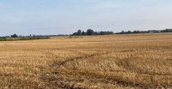4.92 Ha (12.14 Ac) Land at High Road, Guyhirn, Wisbech, Cambridgeshire, PE13 4ET